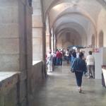 Psillo claustro